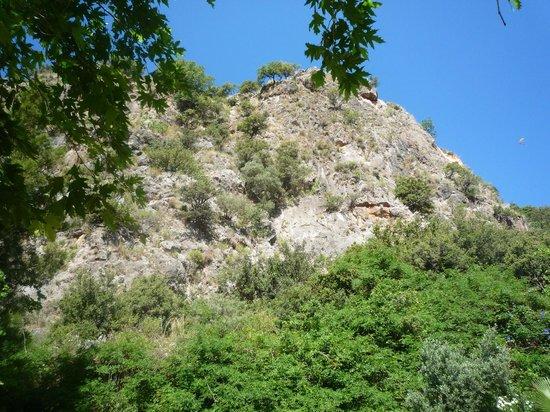 Montebello Resort: View across the hillside