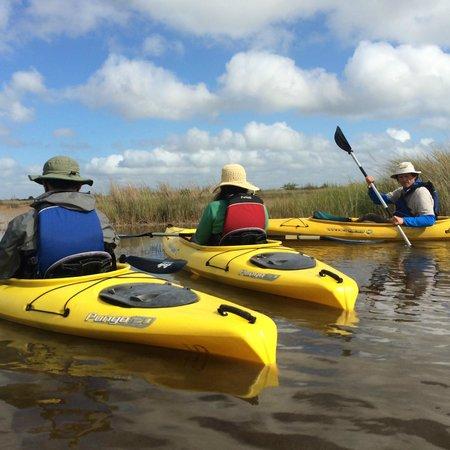 Everglades Rentals & Eco Adventures: Wow!