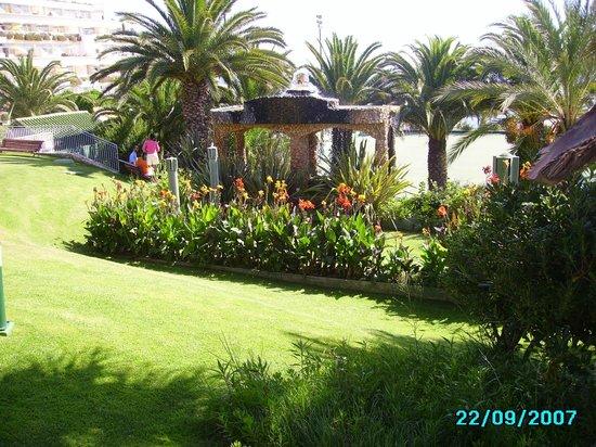 Muthu Clube Praia da Oura: O SEU JARDIM