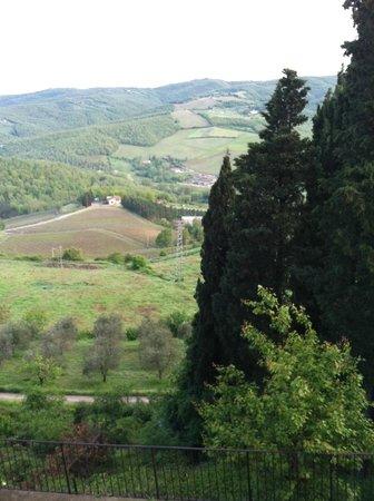 Relais Vignale: view