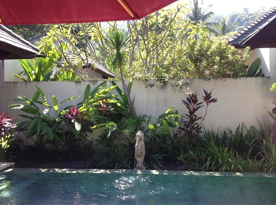 Kebun Villas & Resort: Our private pool with water feature