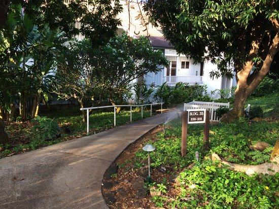 Kiahuna Plantation Resort: Condo