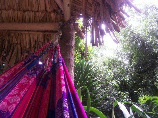 Madre Tierra Resort & Spa: Hammock