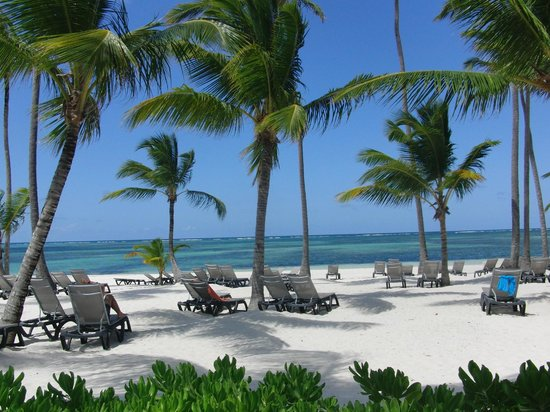 Barcelo Bavaro Beach - Adults Only: playa