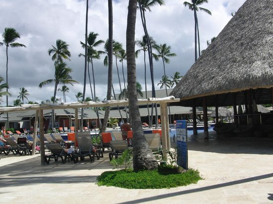 Barcelo Bavaro Beach - Adults Only: bar y piscina hotel de dia