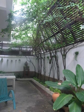 Littlest Guesthouse : Pocket garden outside the downstairs room