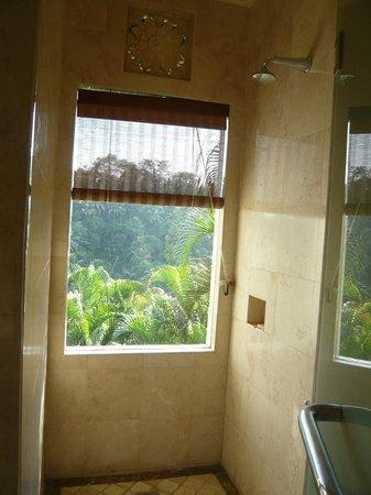 Puri Wulandari Boutique Resort: View From the Sunken Bath