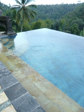 Puri Wulandari Boutique Resort: Peaceful View From Our Lap Pool