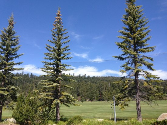 Americas Best Value Inn-Tahoe City/Lake Tahoe: View from the back of the hotel.