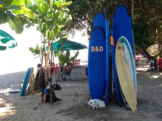 Kuta Seaview Boutique Resort & Spa: on the beach at Kuta