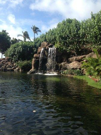 Hyatt Regency Maui Resort and Spa: Lagoon area