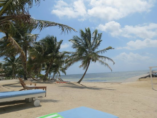 Sapphire Beach Resort : The beach is all yours!