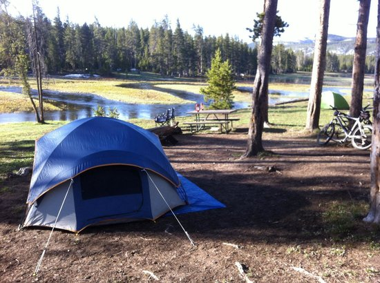 NORRIS CAMPGROUND (Yellowstone National Park, WY) foto's