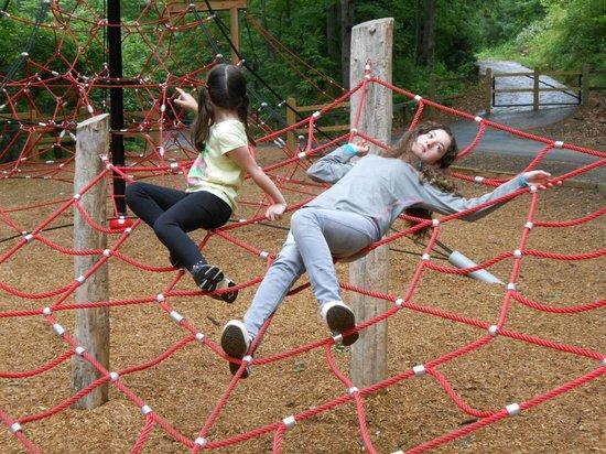 Western North Carolina Nature Center : Spider web climbing