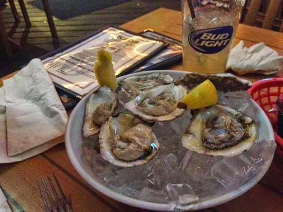 The Siesta Key Oyster Bar: oysters!