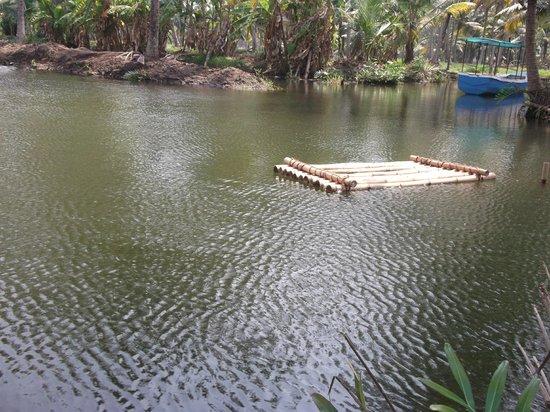 Mangrove Island Village Private Tours: Bamboo raft