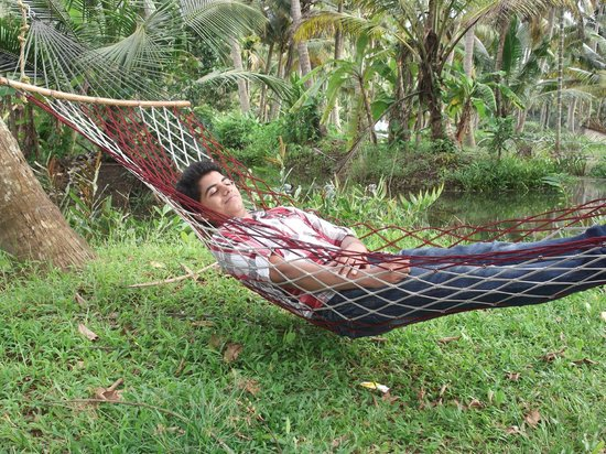 Mangrove Island Village Private Tours: Napping in the Hammocks
