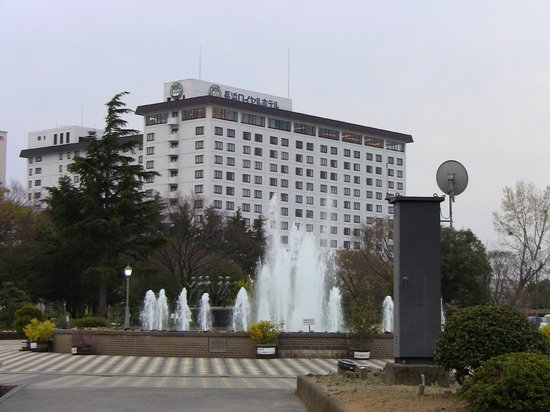 Nagahama Royal Hotel: 豊(ほう)公園から見たホテル