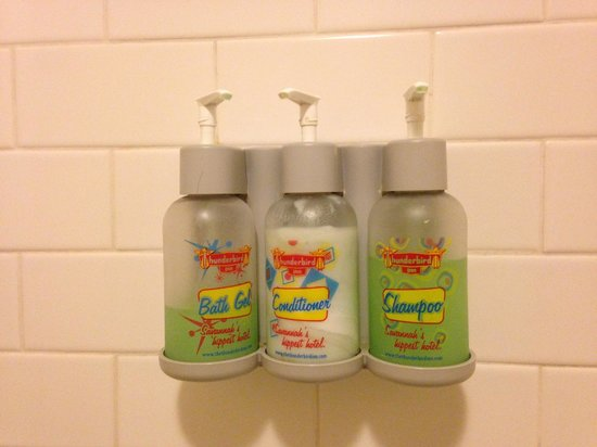 The Thunderbird Inn: bathroom shampoo and stuff