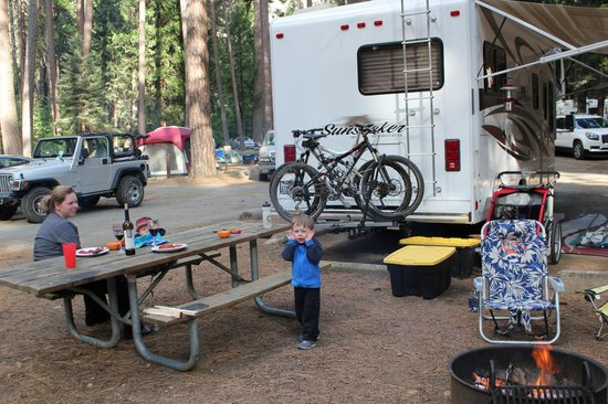 North Pines Campground: Site 210 North Pines