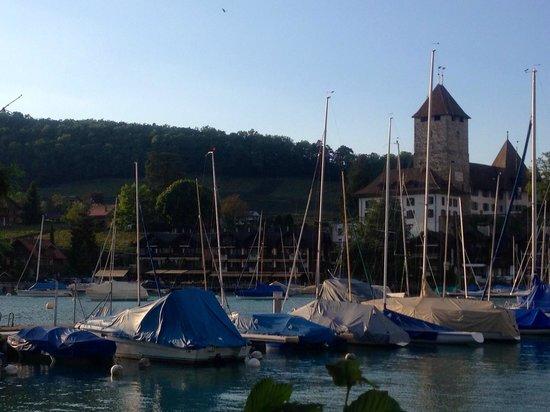 Seegarten Hotel Marina: View across marina