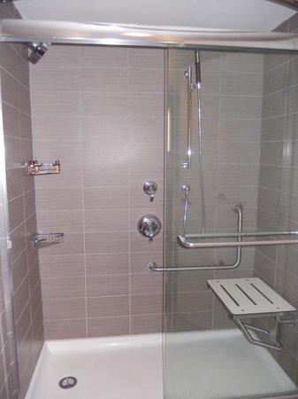 Sheraton Hamilton Hotel : Accessible bathroom
