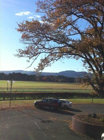 Rydges Rotorua: View from 1st floor room over the Racecourse