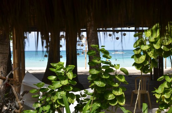 Sea Wind Boracay Island: View outside my window.