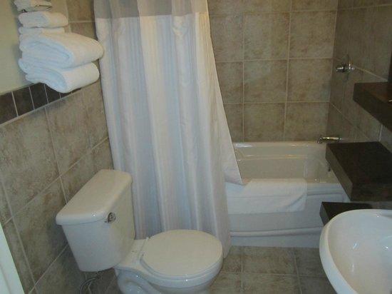 Hôtel Chicoutimi : Salle de bains rénovée