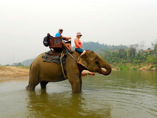 Elephant Village Sanctuary Day Trips: Trekking.