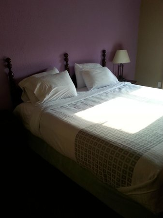The Aurora Inn Hotel & Event Center : King Size Bed