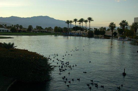 Boat Ride Picture Of Desert Springs Jw Marriott Resort