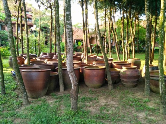 Van Chai Resort: The hotel grounds