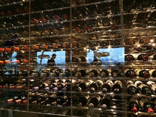 Bayview : Wine cellar