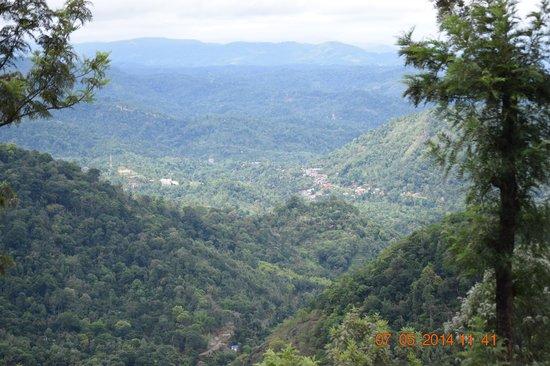 Club Mahindra Munnar: View of Valley from Resort.