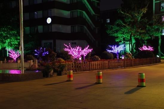 Xijiao Hotel Beijing by night