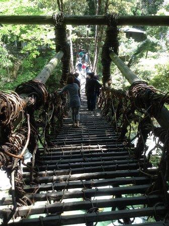 Iya Kazura Bridge: 渡る前