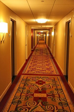 Buffalo Marriott Niagara: Hallway