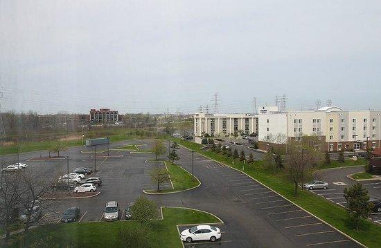 Buffalo Marriott Niagara: View