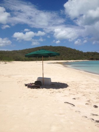 Galley Bay Resort: Private excursion to Pinchin Bay