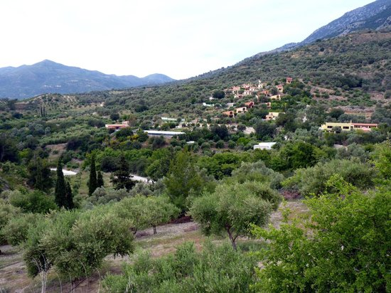 Overview of Eleonas