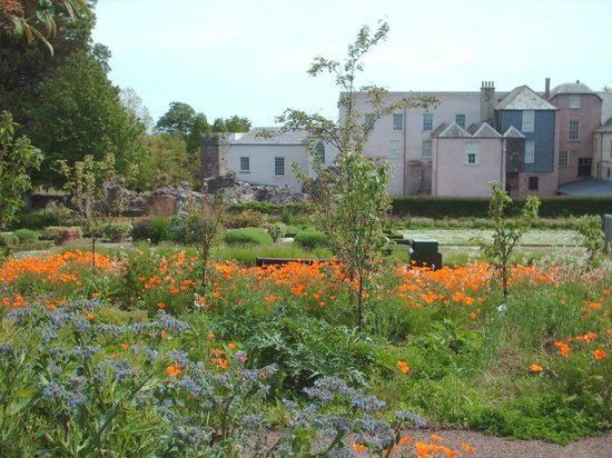 Torre Abbey Historic House and Gardens: Gardens at Torre Abbey