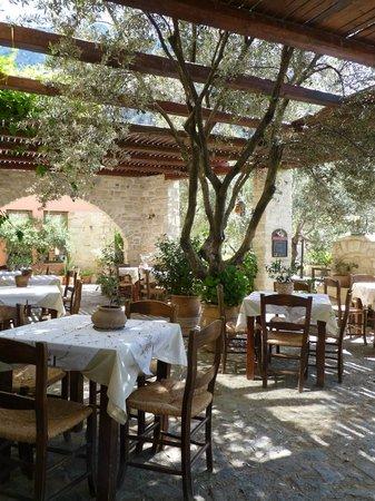 Eleonas: Taverna terrace