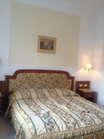 Hotel Ambassador - Zlatá husa : Standard Room