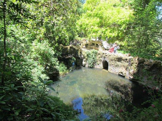 Quinta da Regaleira: 10