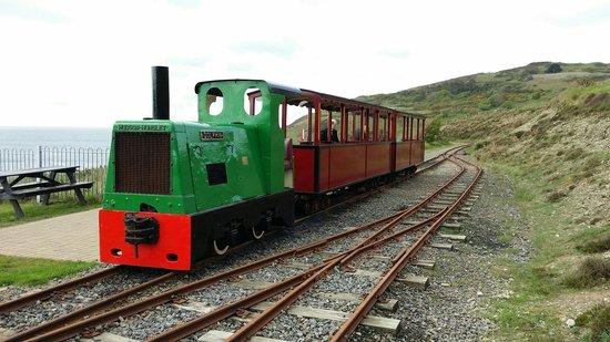 Groudle Glen Railway: Dolphin