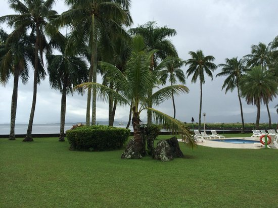 Holiday Inn Suva: tall coconut tress by the swimming pool