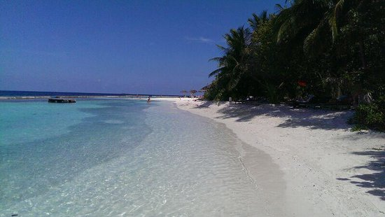 Ellaidhoo Maldives by Cinnamon : Beach