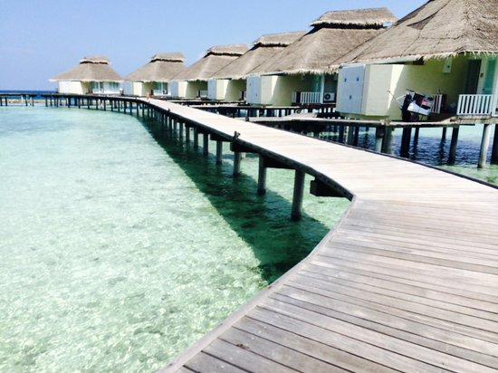 Ellaidhoo Maldives by Cinnamon: Bungalows