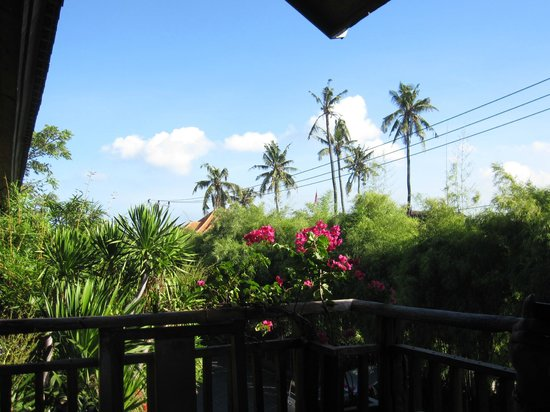 Hotel Puri Bambu: from restaurant